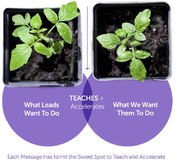 marketo-teaching-accelerating-leads