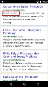 tom-dongilla-mobile-friendly-hair-salon-sites